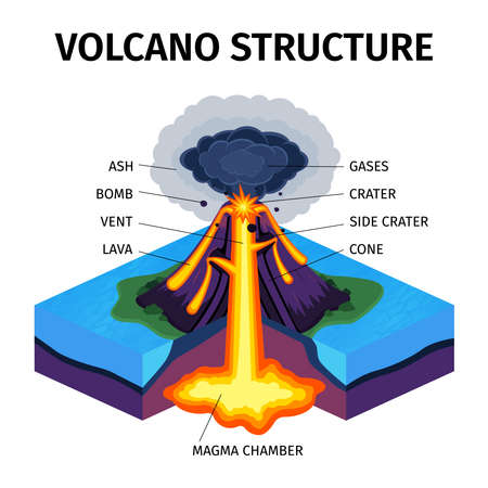 Cross section of volcano isometric diagram with indicating of magma chamber gases cone vent crater lava bomb ash vector illustration