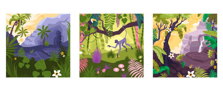 Landscape set of flat square compositions with colorful views of rainforest plants animals and mountain rocks vector illustration Ilustracja