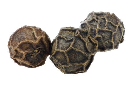 pimienta negra: Pimienta negro aislado en blanco