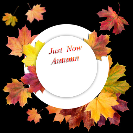 Autumn sale and hello autumn  design set of posters and background Imagens
