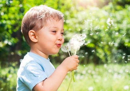 blowing dandelion: Ragazzo con dente di Leone Archivio Fotografico