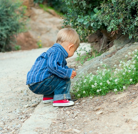 Boy in the garden photo