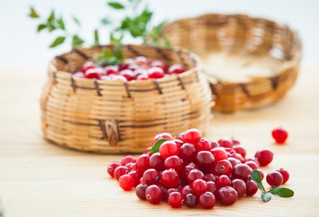 Fresh red cranberries photo