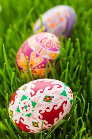 eggcup: Easter eggs in green grass