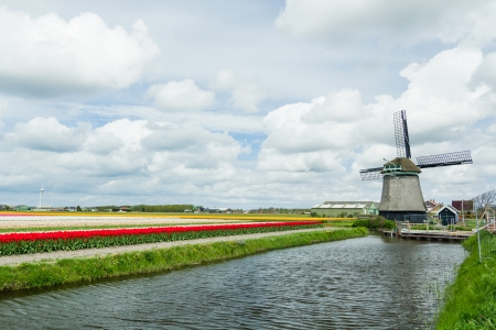 Dutch windmill  Netherlands photo