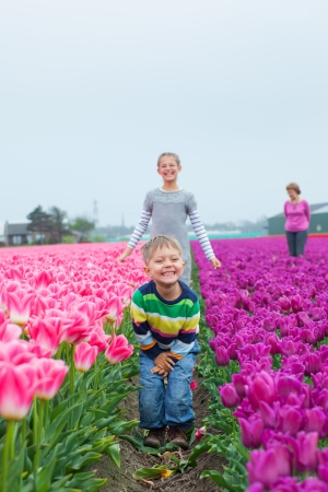 Boy with family in the purple tulips field Stock Photo - 13920660