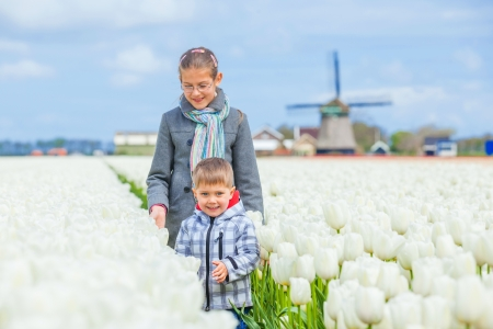 Child in the purple tulips field photo
