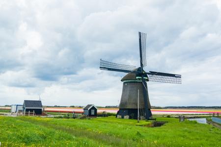 Dutch windmill Stock Photo - 14051067