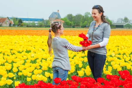 Girl and her mother with bouquet between of the yellow-red tulips field Stock Photo - 17855856