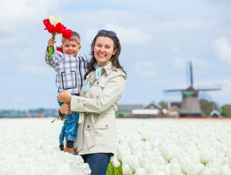 Little boy with bouquet red tulips and his mother between of the white tulips field Stock Photo - 17887098