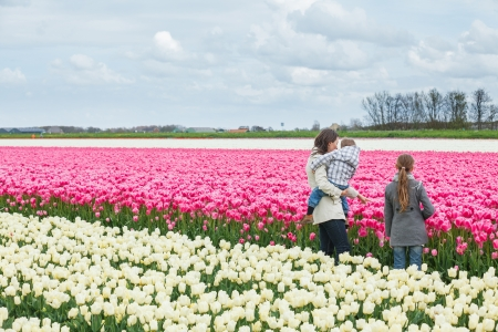 Mother with her child walks between of the purple tulips field Stock Photo - 18241253