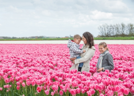 Mother with her child walks between of the purple tulips field Stock Photo - 18241244