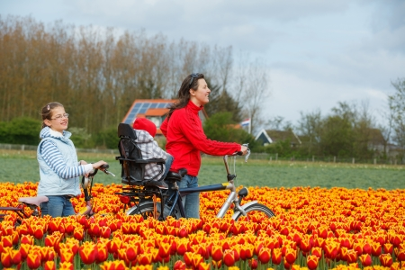 Cute young woman with two kids on bicycles in tulips fields photo
