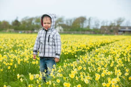 A little cute boy playing in a field of daffodils photo