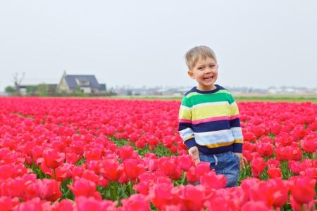Cute Boy between of the purple tulips field Stock Photo - 18871859
