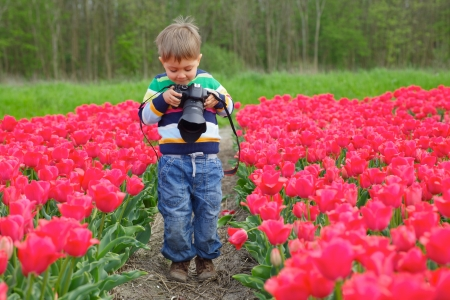 Cute little boy is taking pictures in field with tulips in Holland photo