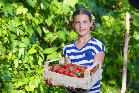 Beautiful smiling girl holding a box of strawberries in garden photo