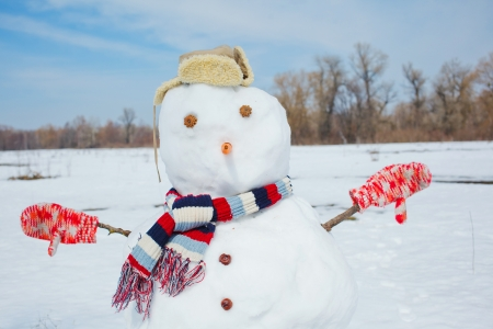 Real big amusing snowman clouse up with top hat and carrot nose on a beautiful and cold winter morning  photo