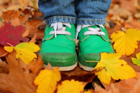 Green leather kids boots and yellow leaves photo