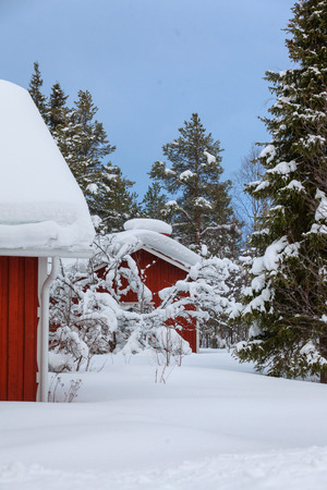 Red wooden Finnish house photo