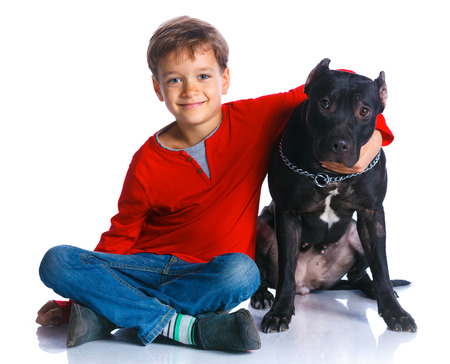 pit bull: Boy with his Pit Bull Terrier