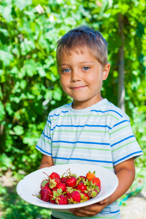 Boy with fresh strawberries photo