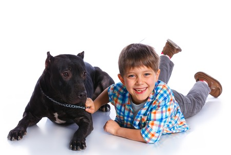 yellow black: Muchacho con su Pit Bull Terrier Foto de archivo