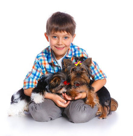 5 6 years: Boy with his Yorkshire terrier