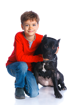 black and white pit bull: Cute boy sitting with his Pit Bull Terrier smiling at camera on isolated white background