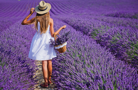 Back view of beautiful young girl in hat with basket in the lavander fields in Valensole. Provence, France. Banque d'images