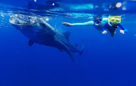 Cute boy with his mother snorkeling with whale shark in the sea, Philippines Banque d'images