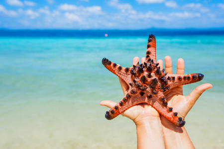 Beautiful colorful starfish in girl hands in blue bright summer water.