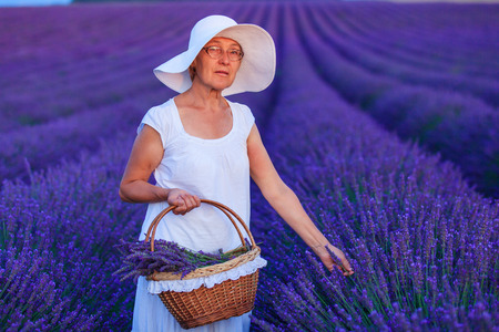 lavander: Senior woman admiring the lavander fields in Valensole. Provence, France.