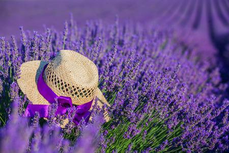 lavanda: Straw hat in Lavanda fields in Provence near Valensole. France