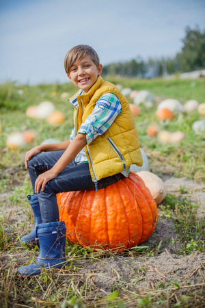 Boy having fun with pumpkins on pumpkin patch on farm Stock Photo