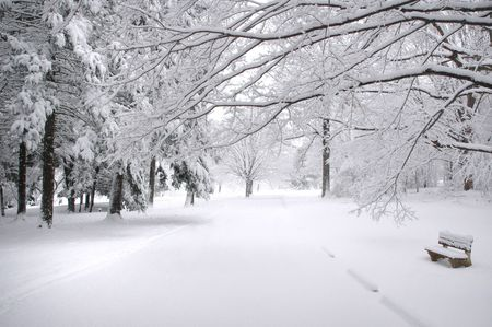 connecticut: Park Bench in the winter in Connecticut Stock Photo