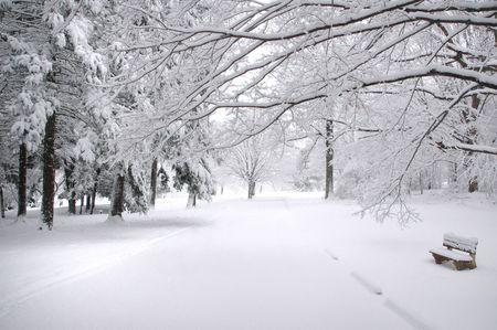 Park Bench in the winter in Connecticut Banco de Imagens