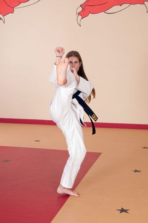 Second Degree Black Belt Woman Banco de Imagens
