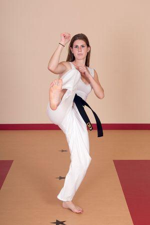 Second Degree Black Belt Woman Reklamní fotografie