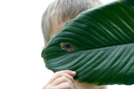 Boy looking through hole in green wet leaf.
