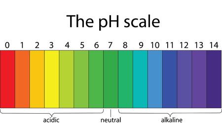 Colorful pH scale  イラスト・ベクター素材