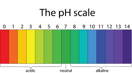 Colorful pH scale Vectores