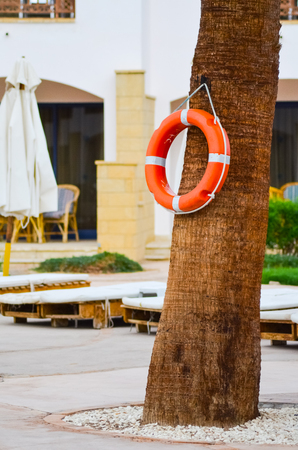 Life buoy hanging on a palm tree to ensure the safety of tourists
