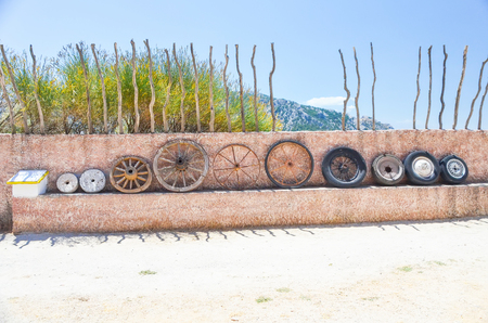 the evolution of the wheel at the Museum of homo sapiens