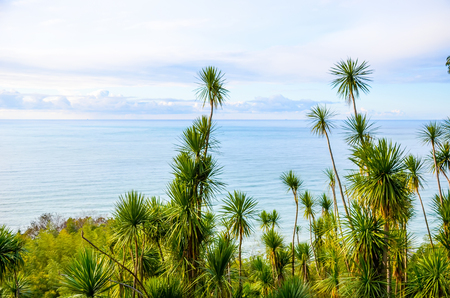 Sea View in the Botanic Garden. Batumi, Georgia. Stock Photo
