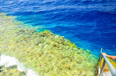 Swimming ladder with a pontoon in the warm sea. Egypt, Sharm El Sheikh. Imagens