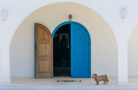 A small dog guards the entrance to the church.