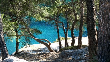 inlet bay: Calanques of Cassis, France