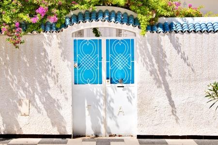 Door in Tunisia Reklamní fotografie