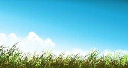 un: Imagen de un prado Stock Photo